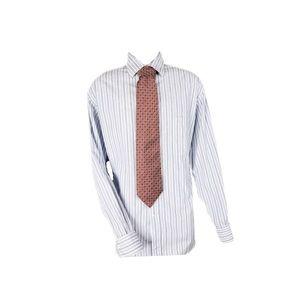 Ermenegildo Zegna Dress Shirt Blue White Striped